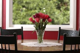 Fresh Red Rose on Kitchen Table