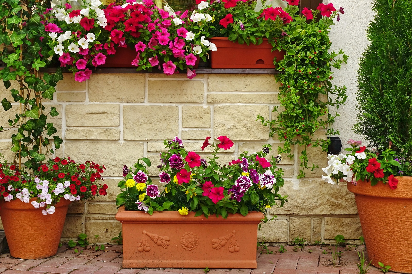 bigstock-Many-Clay-Flowerpots-With-Bloo-141046067.jpg