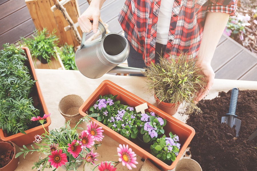 Refresh Your Patio With These Gardening Tips